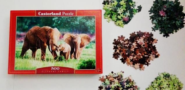 5 paşi să rezolvi eficient un puzzle de parcă viaţa ta ar depinde de rezultat